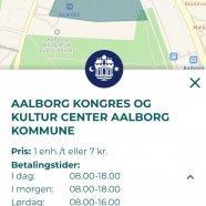 Parkering Aalborg offentlig.jpg